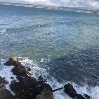 Monterey Plaza Hotel & Spa - 2019 All You Need to Know