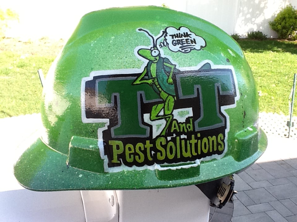 T and T Pest Solutions: 35 Tulip Ave, Floral Park, NY