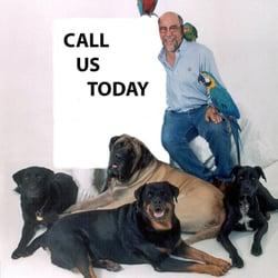 Bob Maida Dog Training