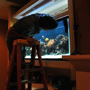 We Know Photo Of Living Art Aquariums   East Quogue, NY, United States.