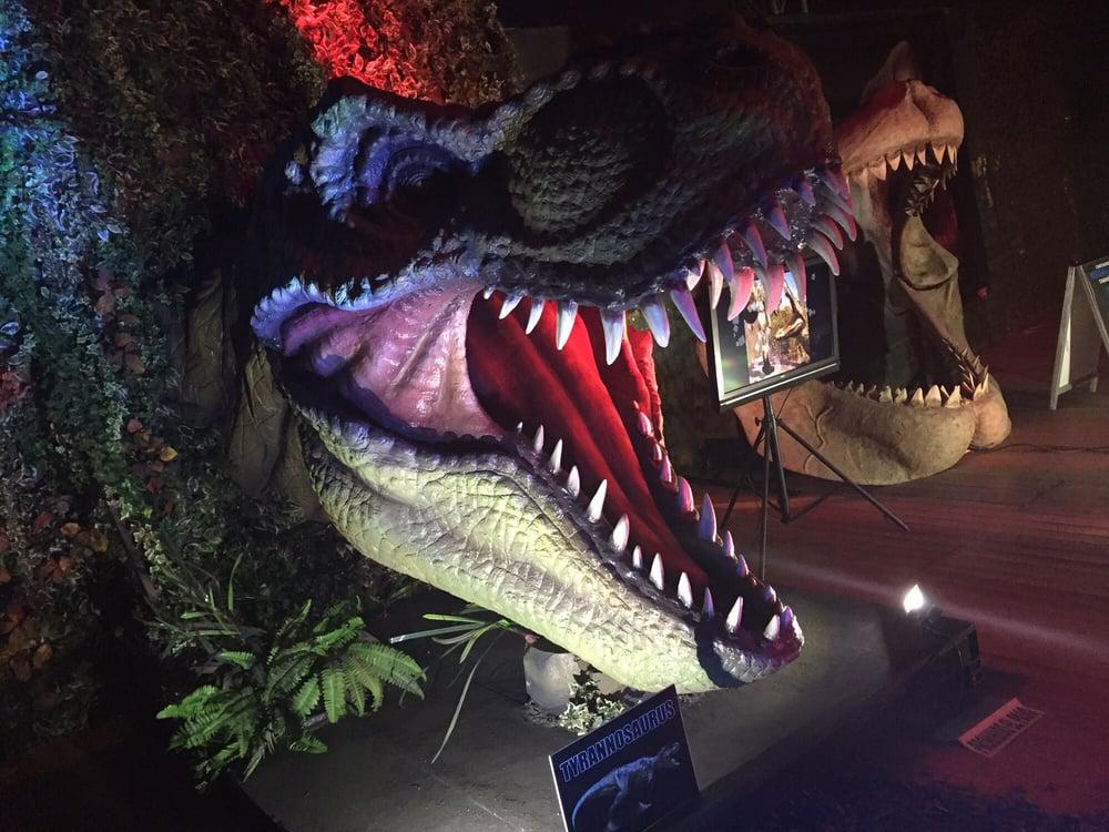 Expo Dinosaurios XXL