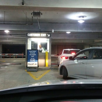 Dollar Rental Car Ft Lauderdale Reviews