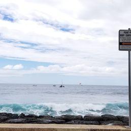 0510ddf3c88488 Photo of Point Panic Beach Park - Honolulu