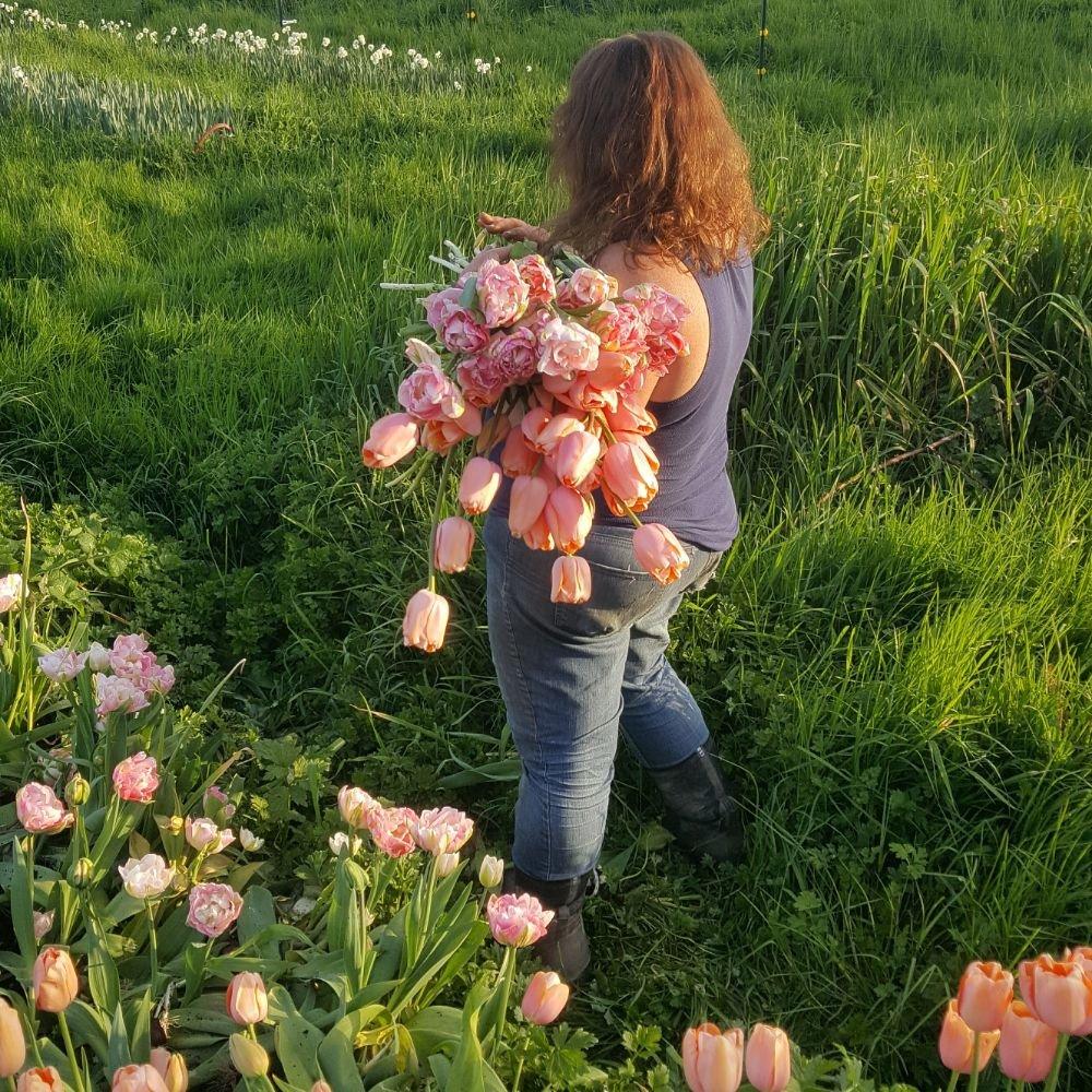 Clatskanie Floral: 275 Columbia River Hwy, Clatskanie, OR