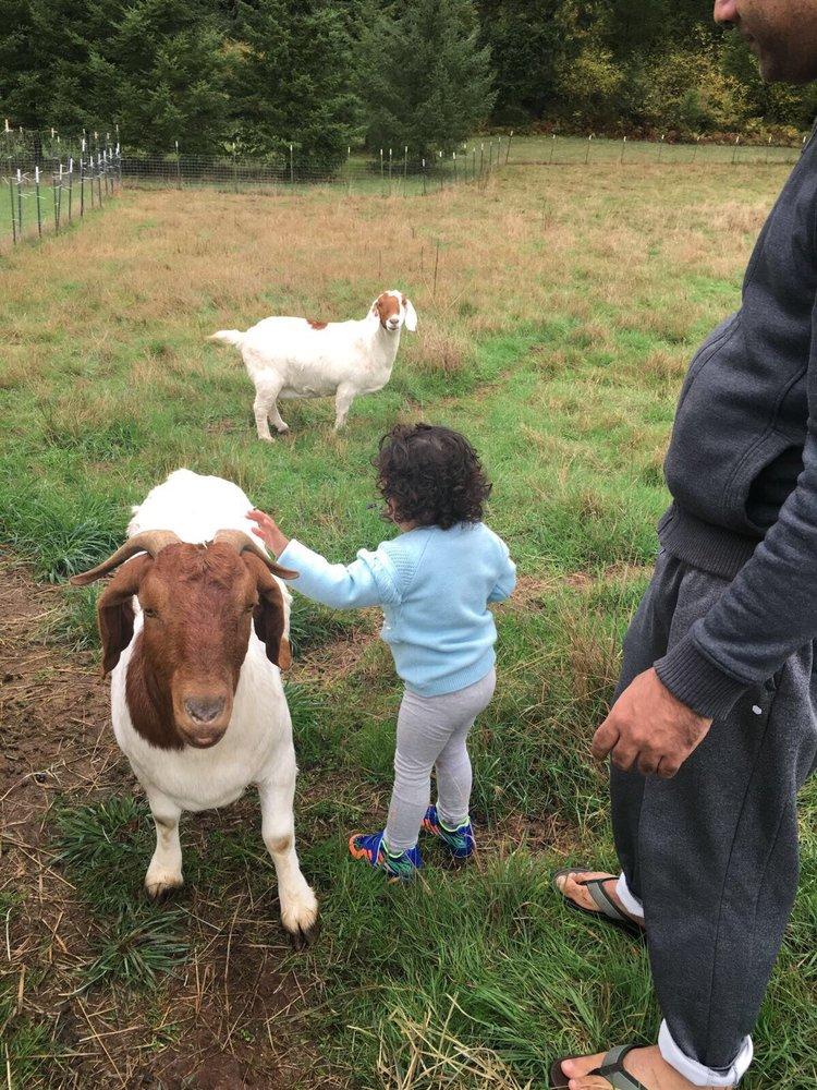 Moonridge Farms: 25113 S Ridge Rd, Beavercreek, OR
