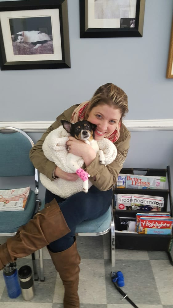 Veterinary Care Of Bedford: 194 Rte 117 By Pass Rd, Bedford Hills, NY