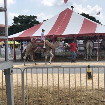 Ohio State Fair - 385 Photos & 88 Reviews - Festivals - 717 E 17th