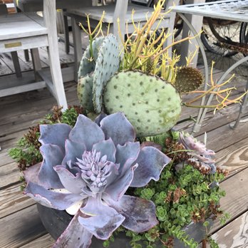 Terrain Garden Cafe 246 Photos 112 Reviews Cafes