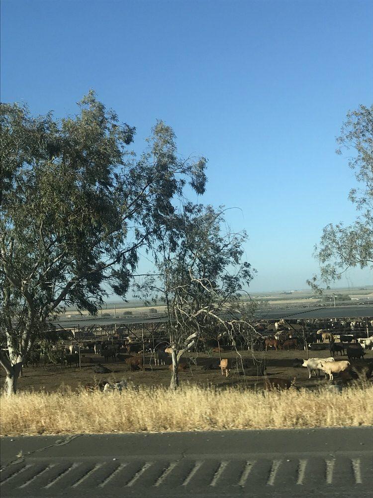 Harris Farms: Hwy 145 & W Oakland, Coalinga, CA