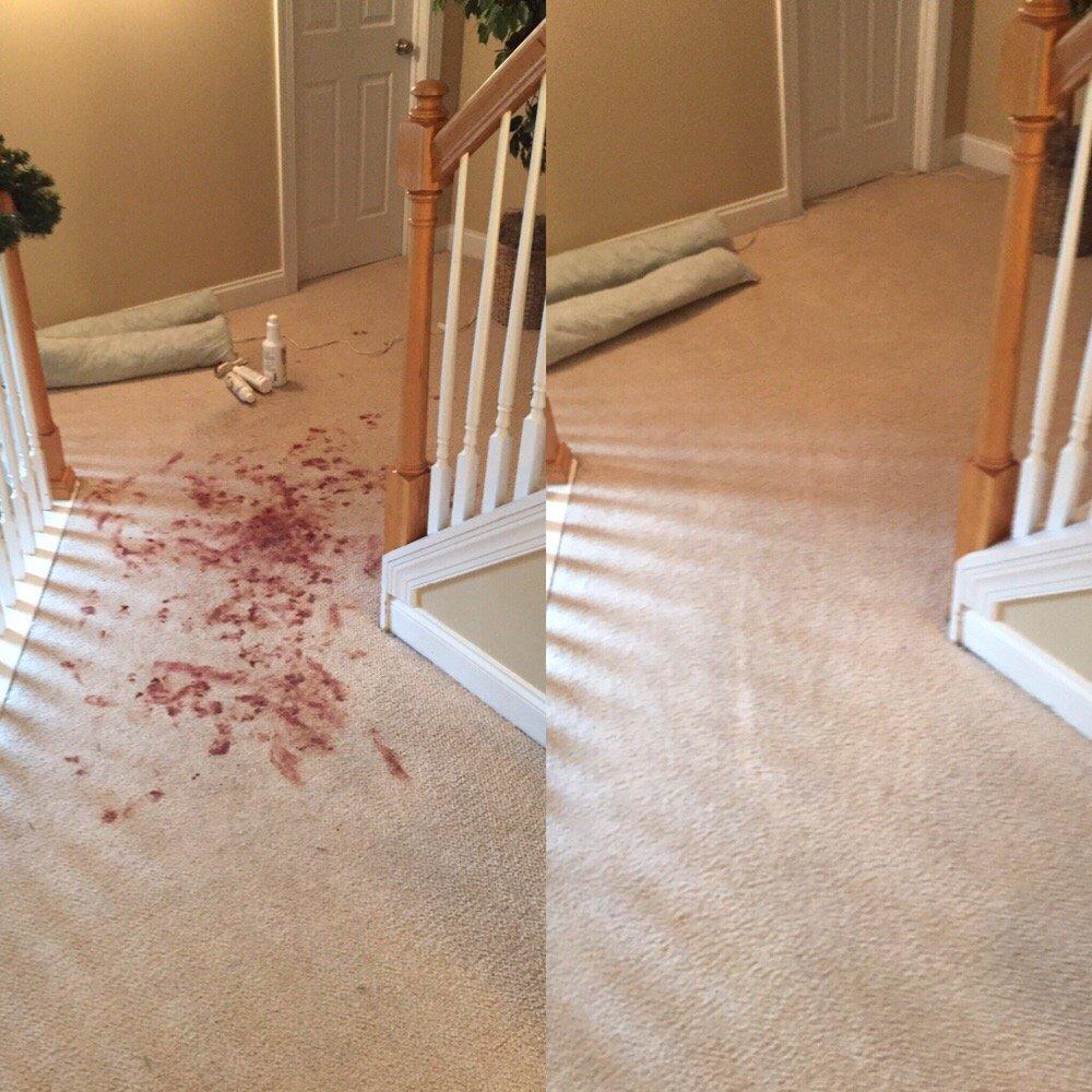Spic n Span Carpet Cleaning