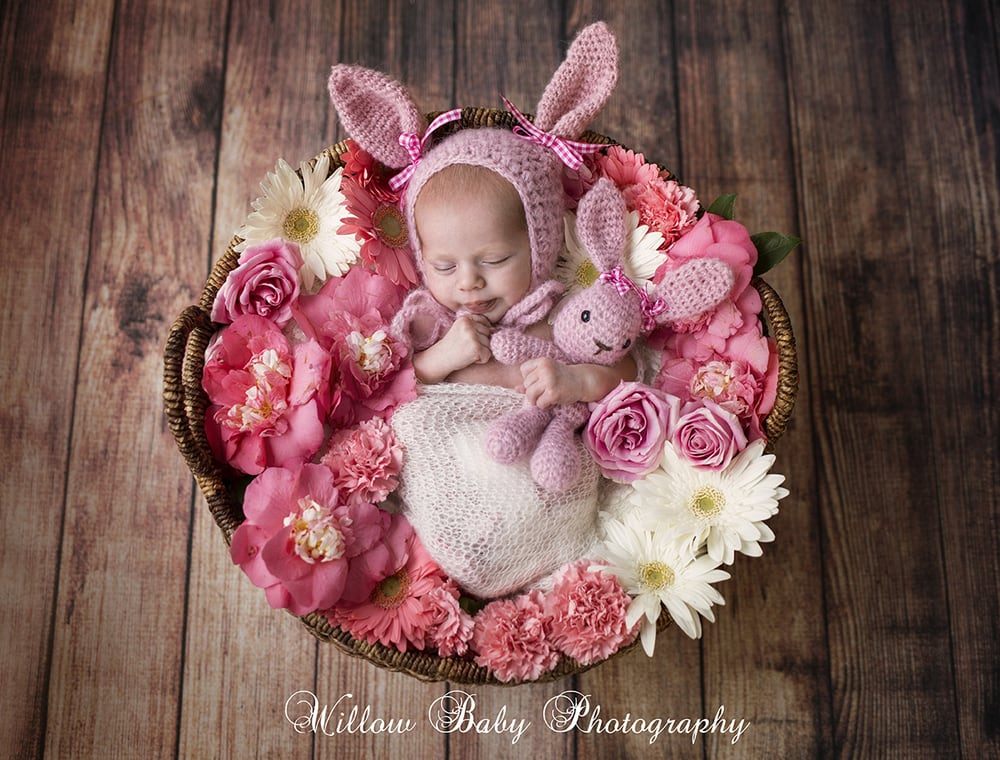 Photo of willow baby photography san jose ca united states willow baby