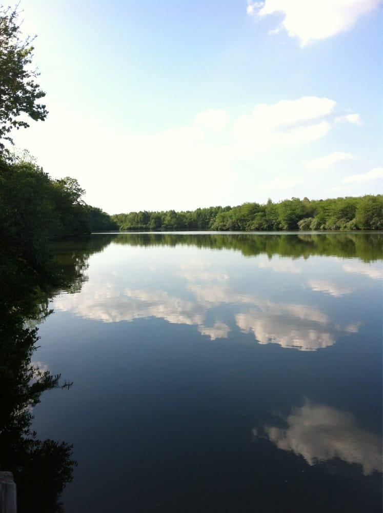 Salt Fork River Preserve: Homer, IL