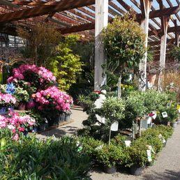 au jardin fleuri - 23 photos - gardening centres - 140 avenue