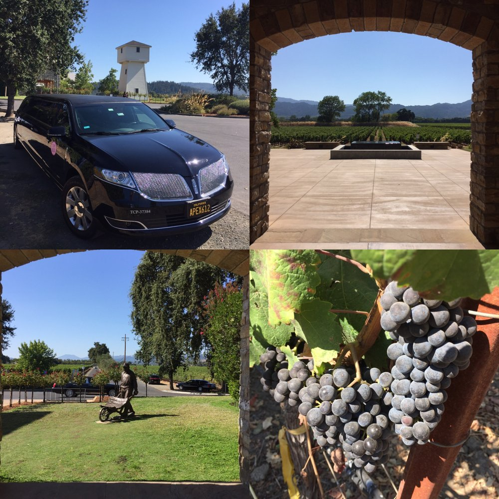 Apex Limousine Transportation and Wine Tours: 952 School St, Napa, CA