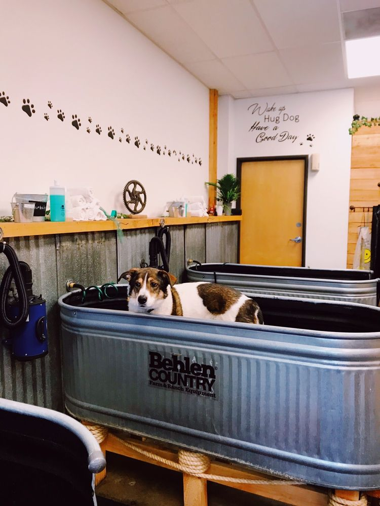 Fur Baby Self-Wash and Grooming: 6899 SE Thiessen Rd, Milwaukie, OR