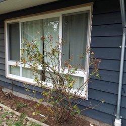 cost to reglaze windows sure50 photo of reglaze window and installations seattle wa united states new large 18 photos 40 reviews windows