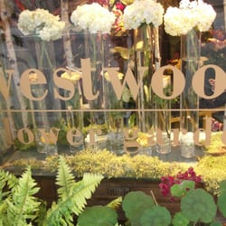 Photo Of Westwood Flower Garden   Los Angeles, CA, United States. One Of