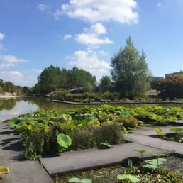Jardin botanique 66 foto 39 s 29 reviews parken quai for Amis du jardin botanique