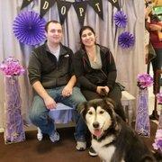 Paw spa 47 photos 20 reviews pet groomers 3501 rd 68 petsmart solutioingenieria Gallery