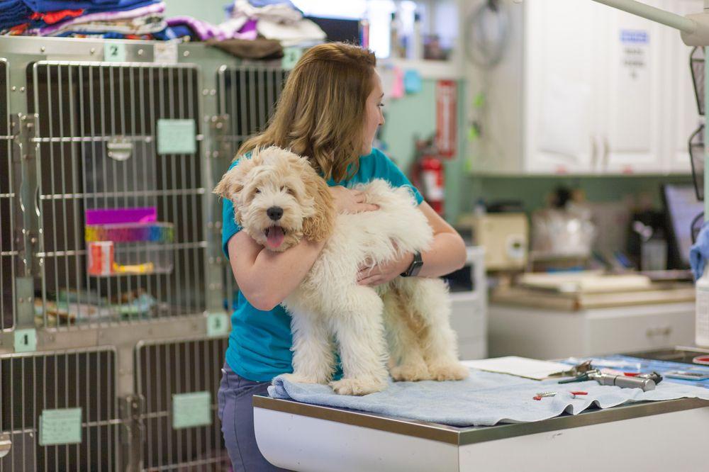 Brookville Animal Hospital: 506 Western Ave, Brookville, OH