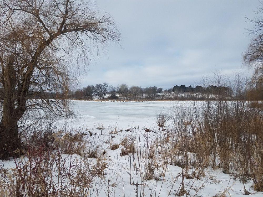 Whitetail Woods Regional Park: 17100 Station Trl, Farmington, MN