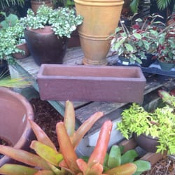 Photo Of The Planted Pot Naples Fl United States Great Selection