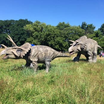 Field Station: Dinosaurs - 110 Photos & 66 Reviews