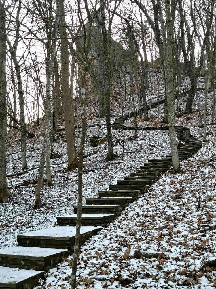 Whitewater State Park: 19041 Hwy 74, Altura, MN