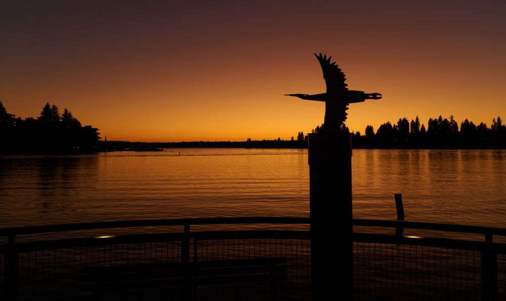 Meydenbauer Bay Park: 9899 Lake Washington Blvd NE, Bellevue, WA