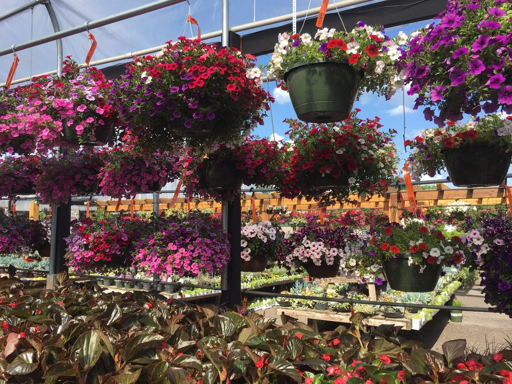 Exceptional Photo Of Sunnyside Gardens   Minneapolis, MN, United States