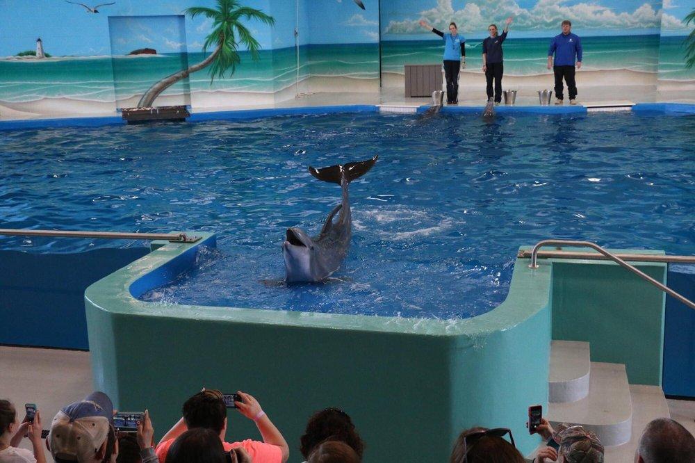 Ocean Adventures: 10801 Dolphin Ln, Gulfport, MS