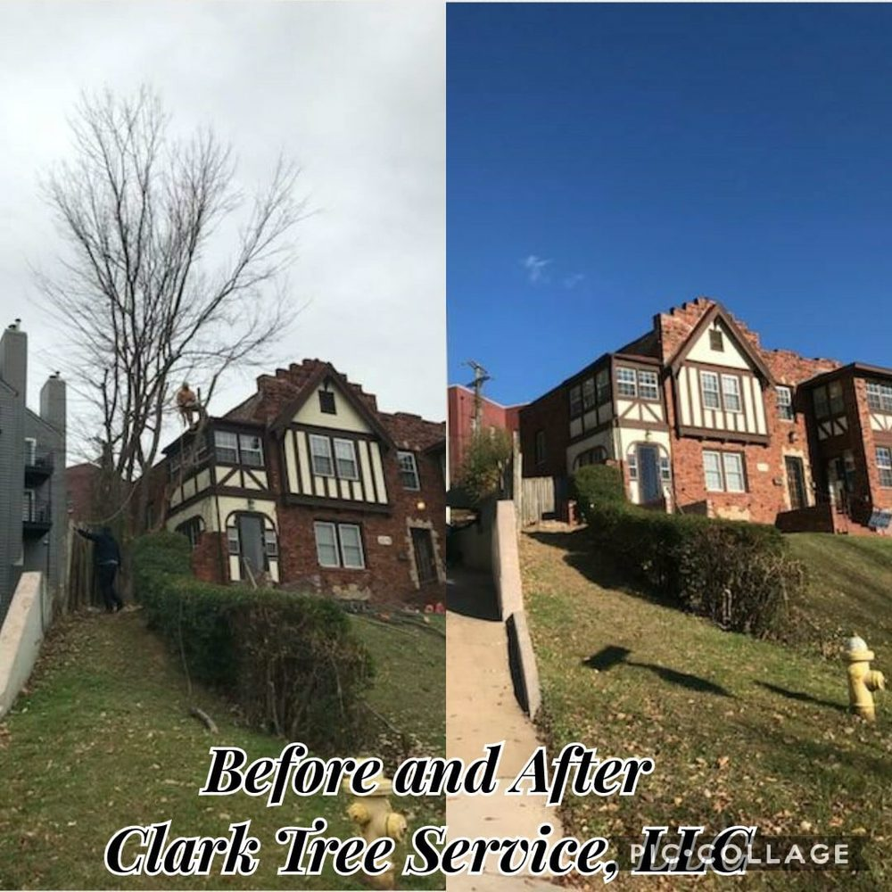 Clark Tree Service: Claremore, OK