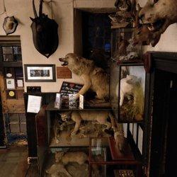 The Drovers Inn >> The Drovers Inn 65 Photos 28 Reviews Pubs Inverarnan