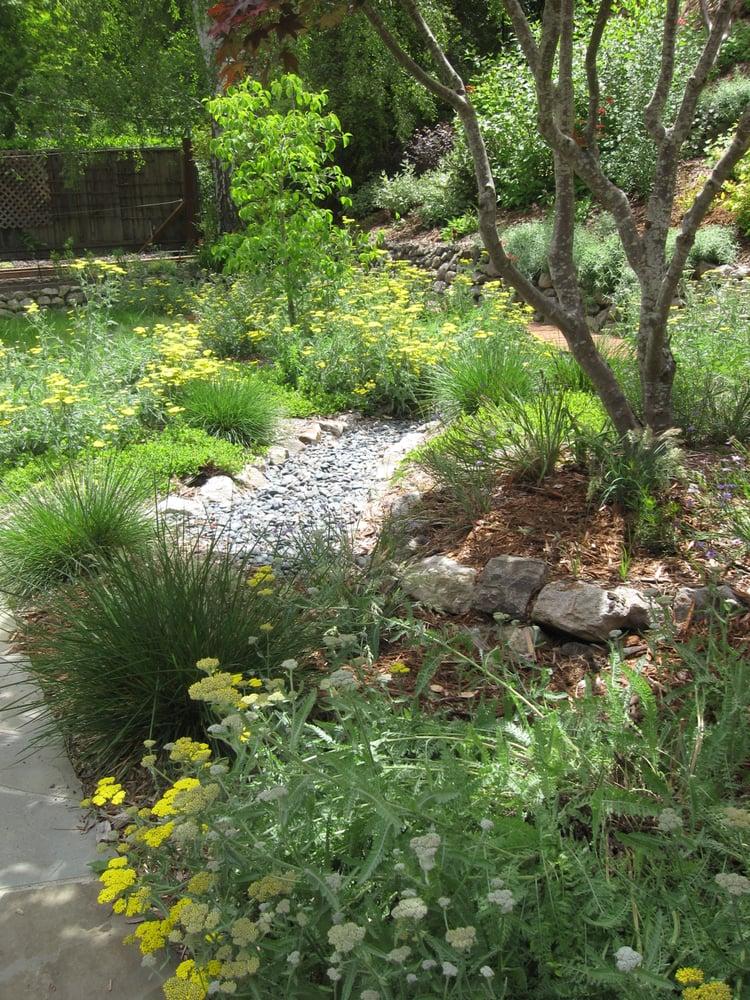 Claudia vieira landscape design landscaping 227 monte for Oakland landscape design