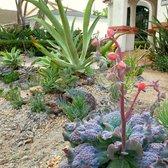Good Photo Of Xeristyle Exterior Design   Fullerton, CA, United States