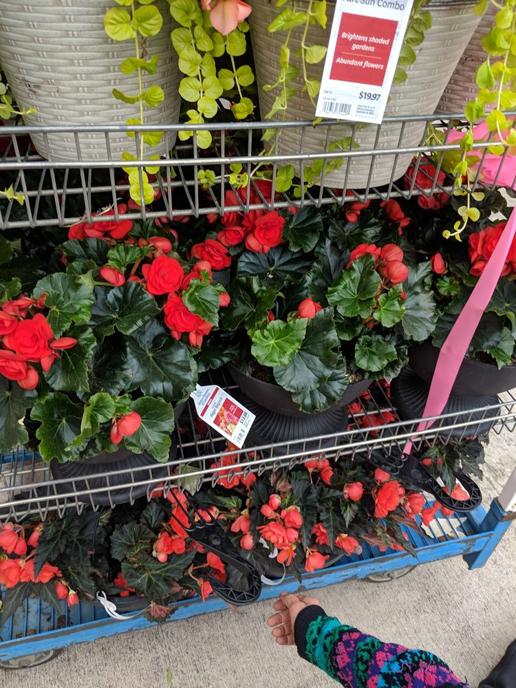 Walmart Garden Center: 700 James Madison Hwy, Warrenton, VA