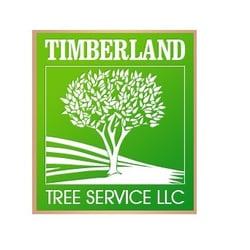 timberland tree