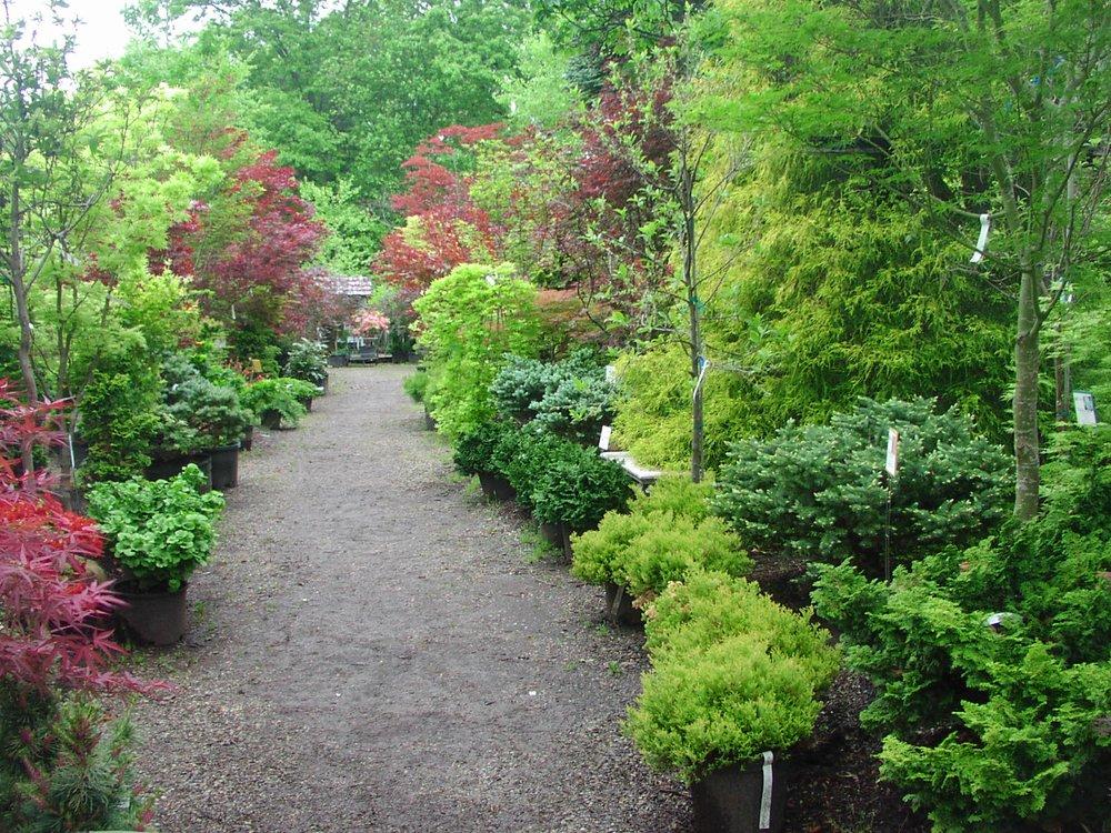 Ambleside Gardens & Nursery: 834 US Hwy 206, Hillsborough, NJ