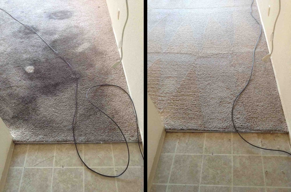 Before Amp After Oxi Fresh Carpet Cleaning Pics Yelp
