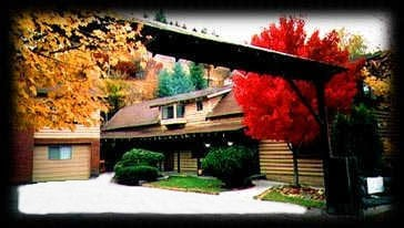 Photo of Mountain View Cabins: Kellogg, ID