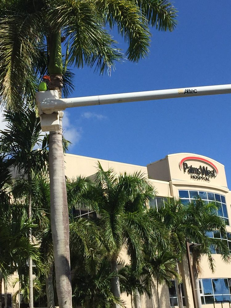 Second To None Landscape And Tree Service Gift Card Coconut Creek Fl Giftly