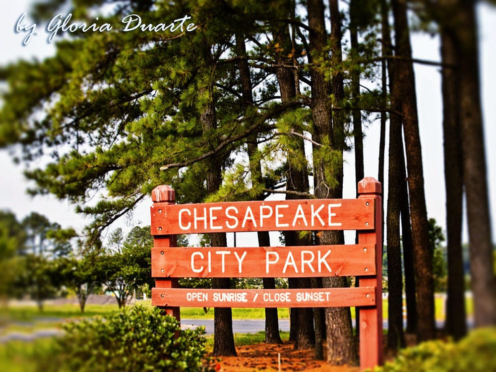 chesapeake city single girls Eventbrite search for events browse events help sign in  the 757 black girls rock event  chesapeake city park, chesapeake, va.