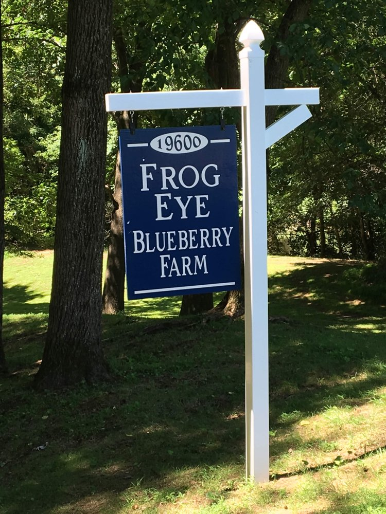 Frog Eye Farm: 19600 Frog Eye Rd, Knoxville, MD