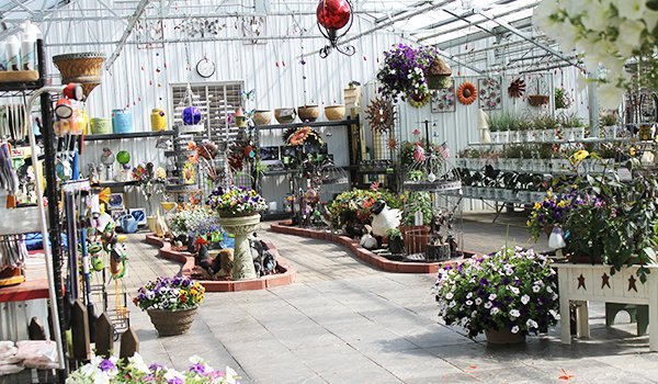 Country Blossoms Greenhouse: 64715 Gillis Rd, Ashland, WI