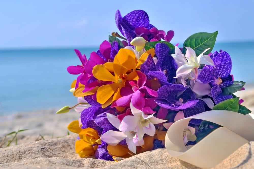 Цветы море открытка