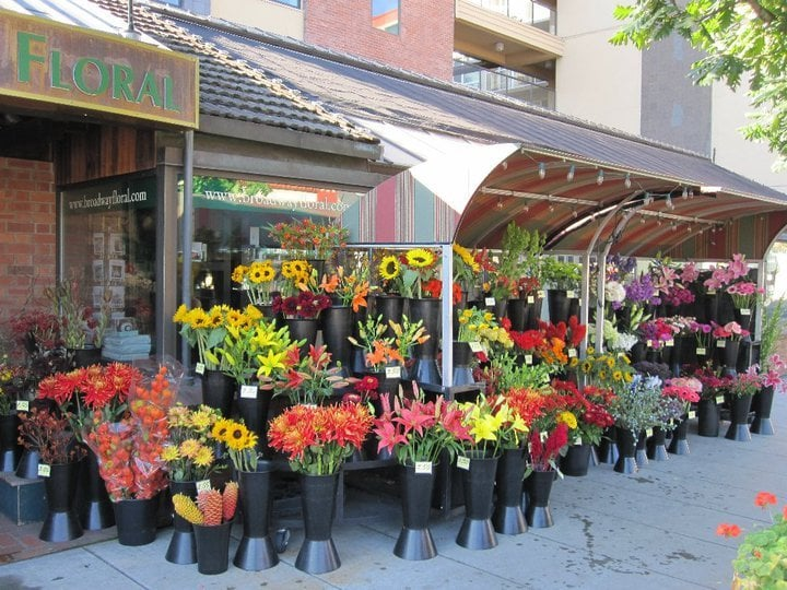 European Style Flower Stand In Front Of Our Store Yelp