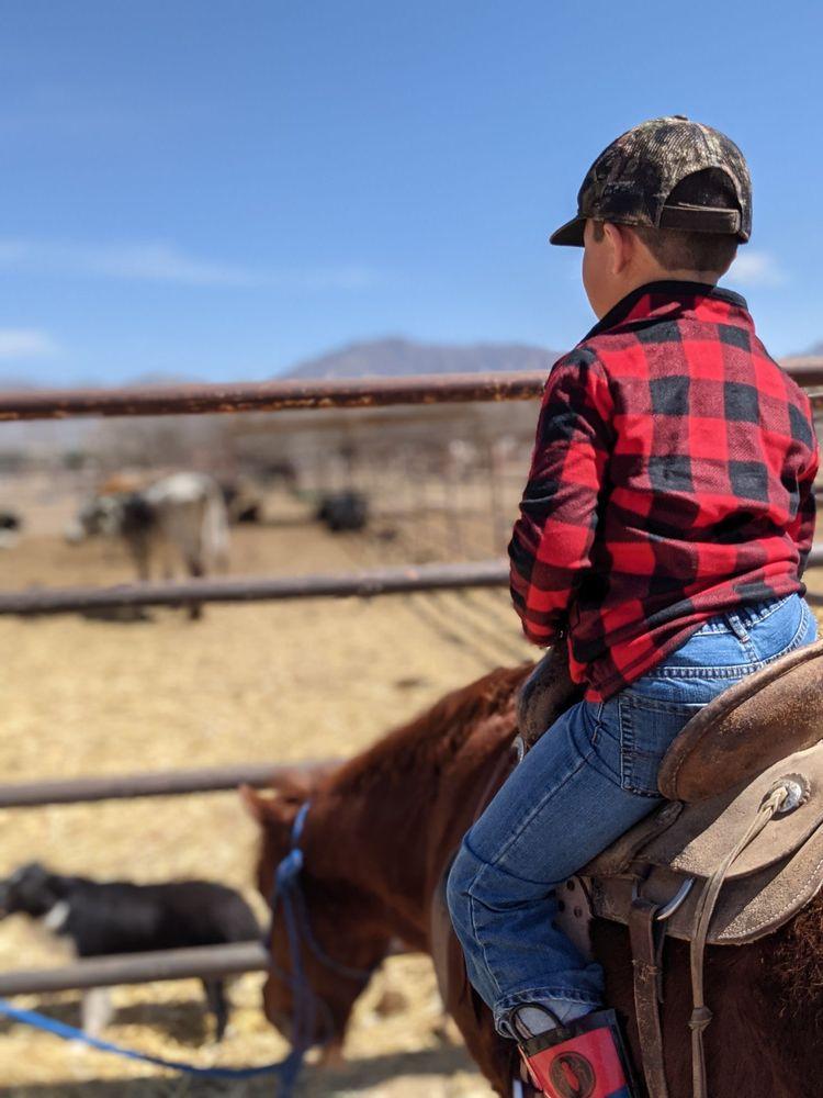 El Paso Valley Trail Rides and Horseback River Rides: 300 Fm 259, Canutillo, TX