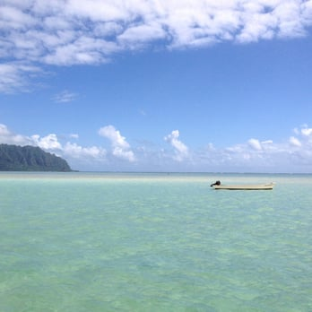 Kaneohe Bay Sandbar 301 Photos 87 Reviews Beaches Kaneohe