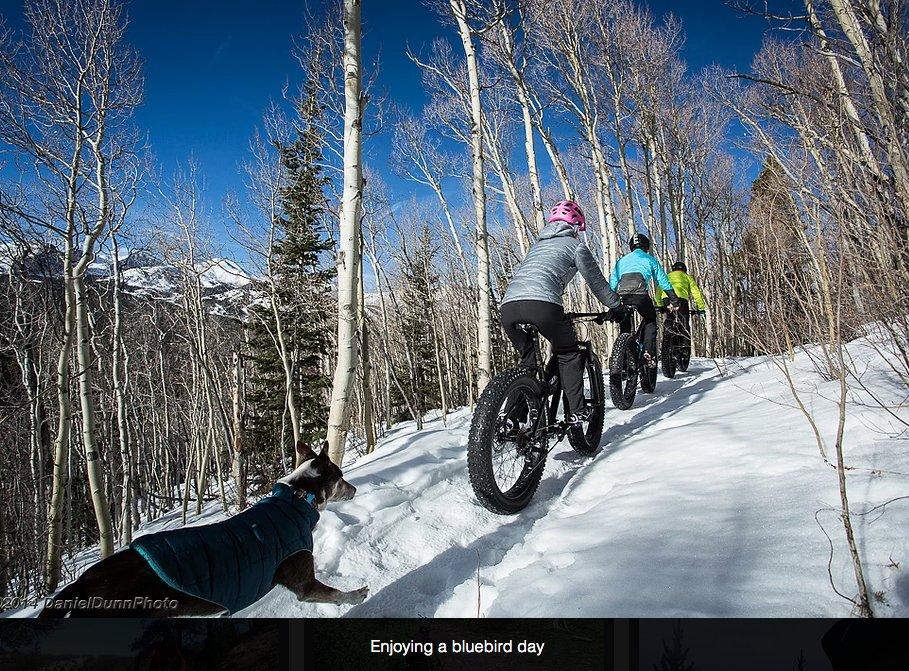 Breck Bike Guides: 1655 Airport Rd, Breckenridge, CO