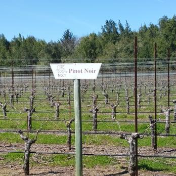 Photo of Brutocao Cellars Philo Tasting Room - Philo CA United States. Wine & Brutocao Cellars Philo Tasting Room - 76 Photos u0026 35 Reviews ...